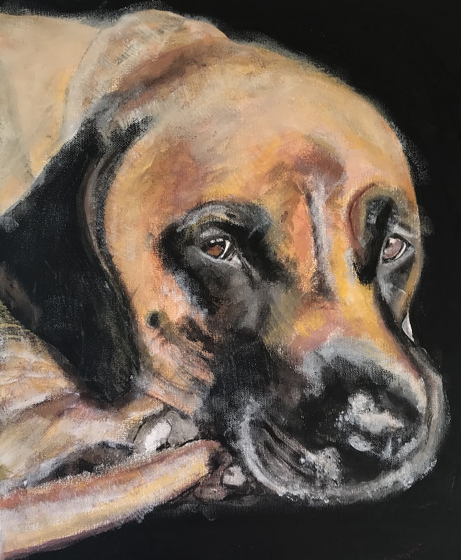 Pet portrait, 40 cm by 30 cm, from £65